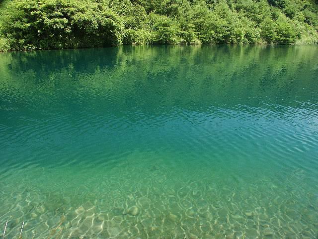 湖面の様子